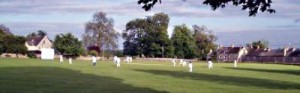 Picture of a Cricket Game